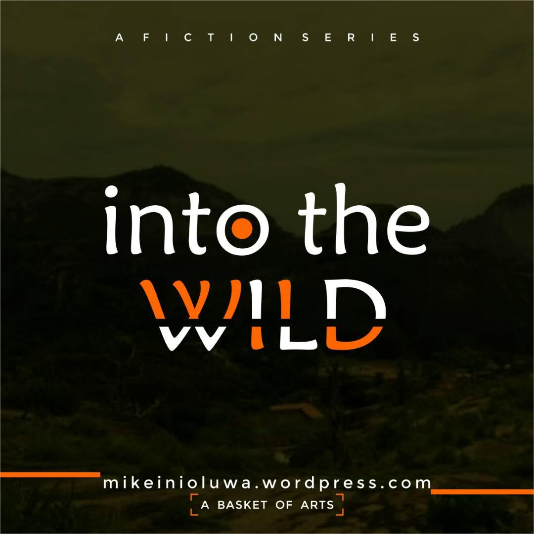 Into The Wild 7